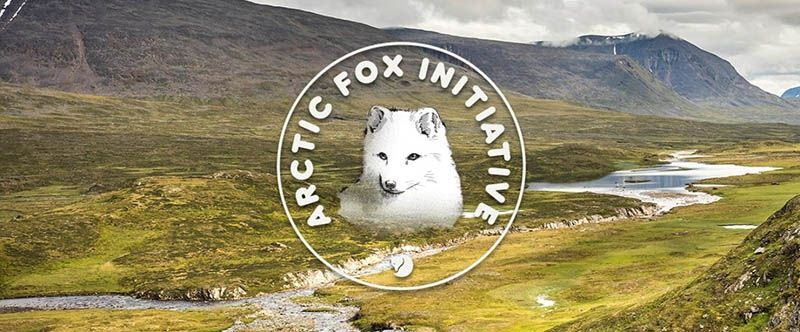 Fjallraven Arctic Fox Initiative
