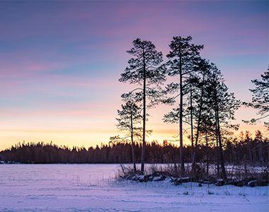 Your Nordic Christmas