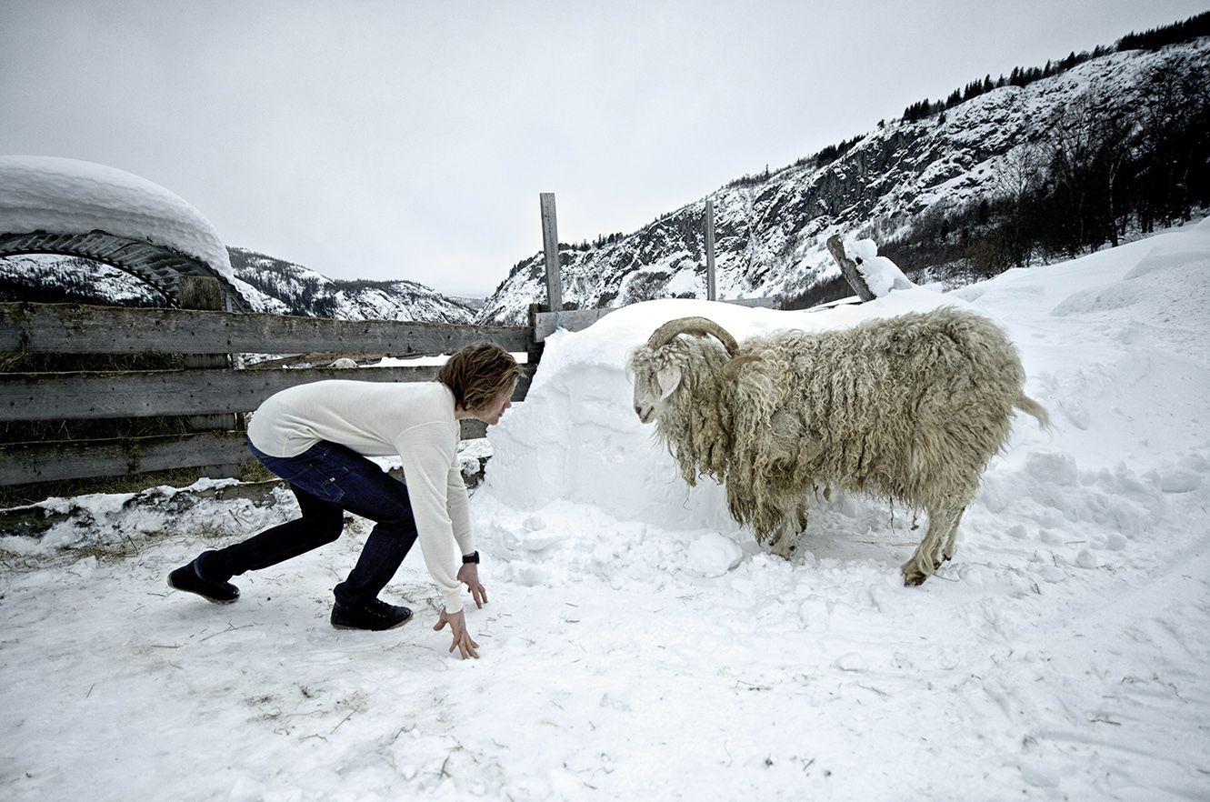 Aclima wool layers